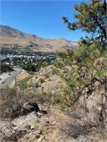 5 acres in the city of Chelan!